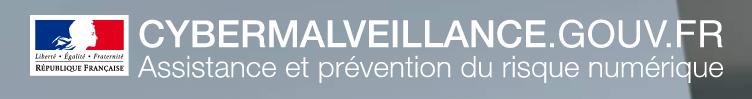 Logo du cybermalveillance.gouv.fr